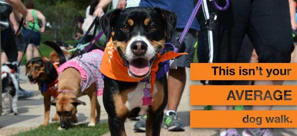 A photo of a Best Friends Strut Your Mutt ad