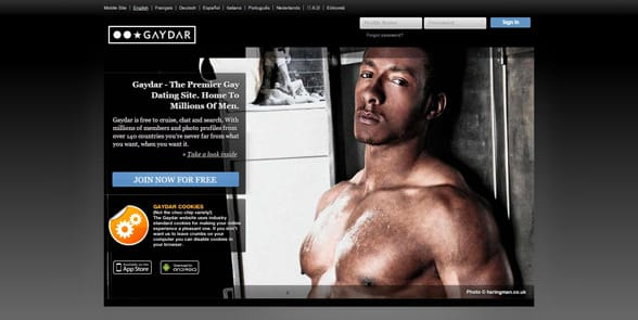 Screenshot of the Gaydar homepage