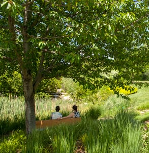 Photo of a couple visiting Red Butte Garden