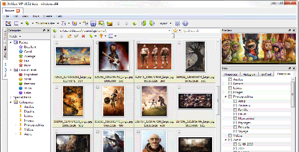 Screenshot of XnView for MP