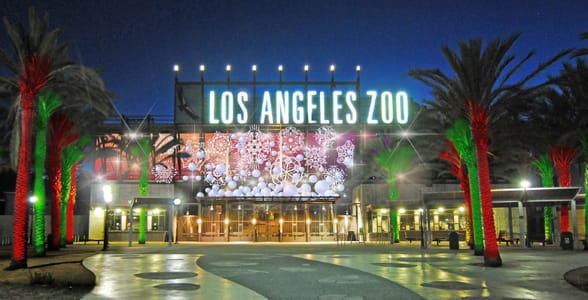 Photo of the LA Zoo at night