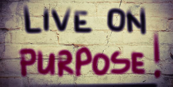 Photo of Live on Purpose graffiti