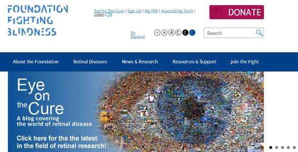 Screenshot of the FFB's homepage