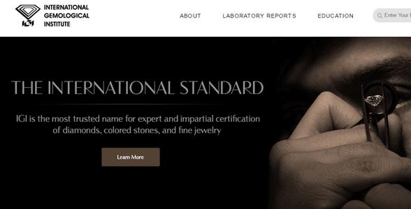Screenshot of IGI's homepage