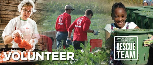 Photos of Forgotten Harvest volunteers