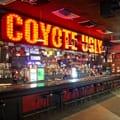 Coyote Ugly Saloon Logo