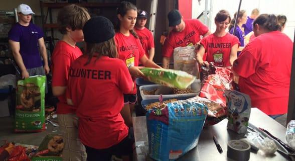 Photo of people volunteering in Jacksonville