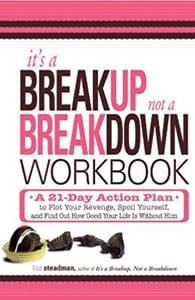 Cover of It's a Breakup Not a Breakdown by Lisa Steadman
