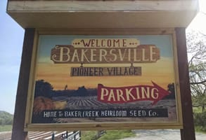 Photo of Bakersville's welcome sign