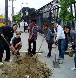 Photo of a Friends of the Urban Forest tree planting event in August 2006