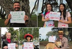 Photos of Friends of the Urban Forest volunteers