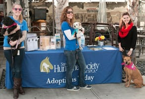 Photo of San Diego Humane Society volunteers