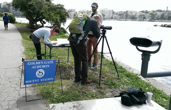 Photo of a Golden Gate Audubon Society docent