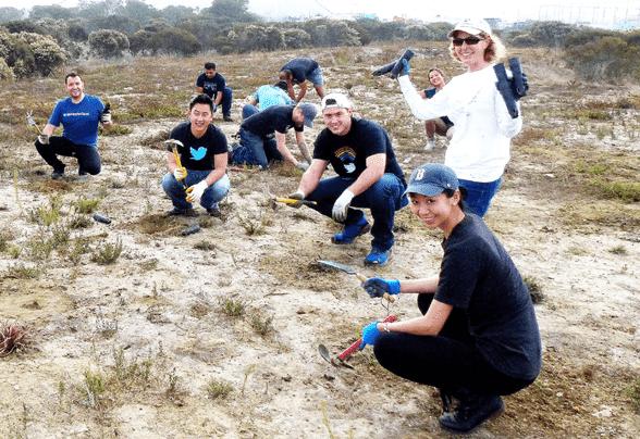 Photo of Golden Gate Audubon Society volunteers