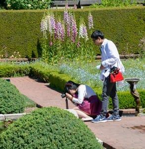Photo of a couple touring Filoli's gardens