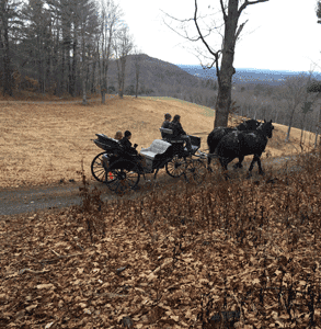 Photo of a carriage ride through Frederic Church's Olana