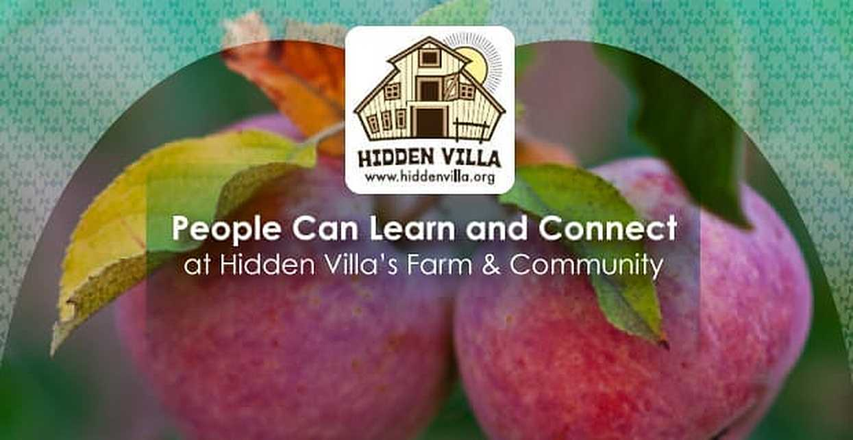 People Can Learn and Connect at Hidden Villa's Farm & Community
