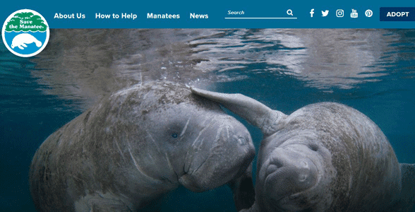 Screenshot of the Save the Manatee Club's website