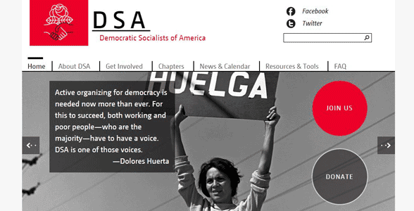 Screenshot of the DSA website