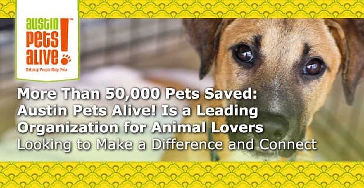 More Than 50,000 Pets Saved: Austin Pets Alive! Is a Leading Organization for Animal Lovers Looking to Make a Difference and Connect