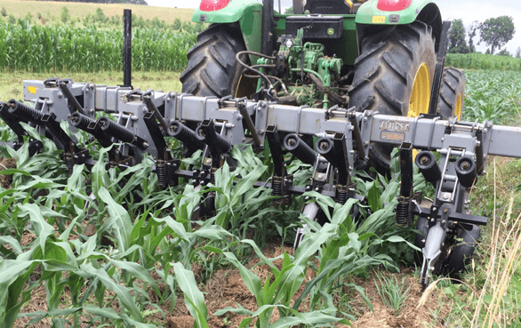 Photo of Farming Systems Trial