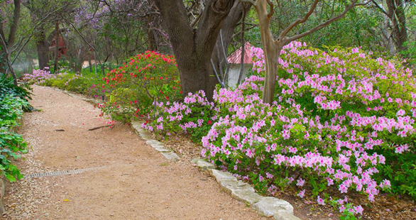 Photo of Zilker Botanical Garden
