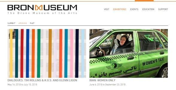 Screenshot of the Bronx Museum's exhibition page