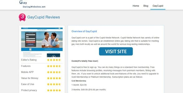 Screenshot of a full review on GayDatingWebsites.net