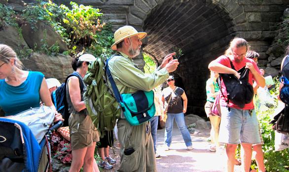 Photo of Wildman Steve Brill conducting a tour