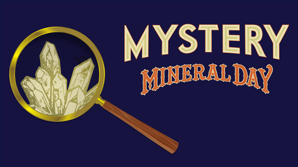 Screenshot of Mystery Mineral Day ad