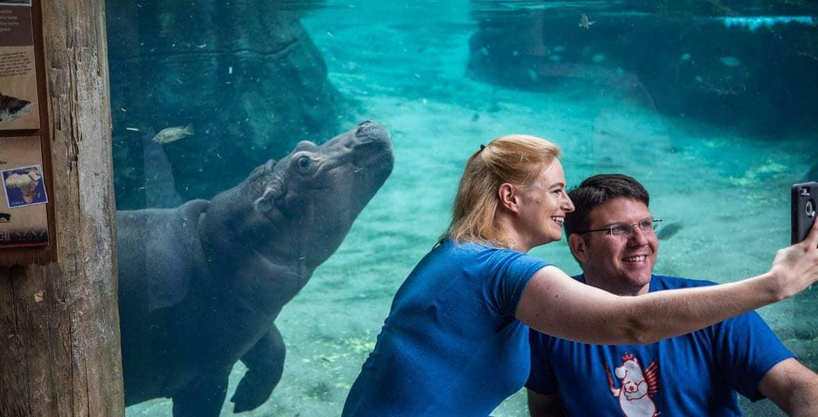 Photo of the Cincinnati Zoo & Botanical Garden