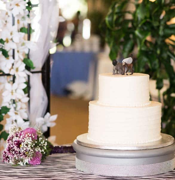 Photo of a wedding cake at Lion Country Safari