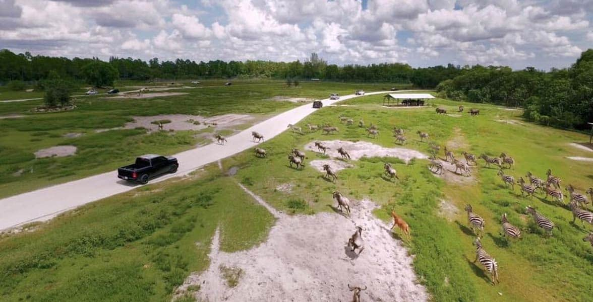 An aerial photo of Lion Country Safari