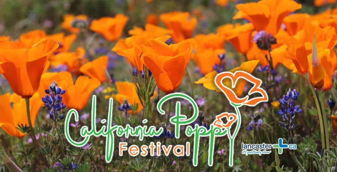 The California Poppy Festival logo