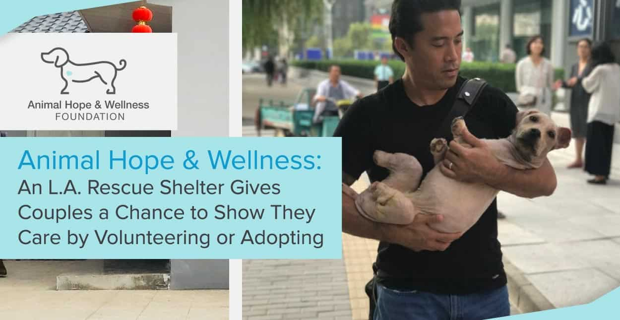 Animal Hope & Wellness: An L.A. Rescue Shelter Gives Couples a Chance to Show They Care by Volunteering or Adopting