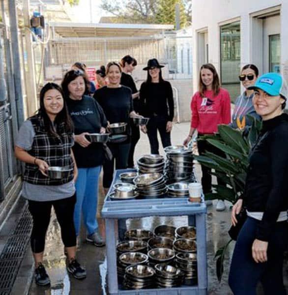 Photo of AHWF volunteers