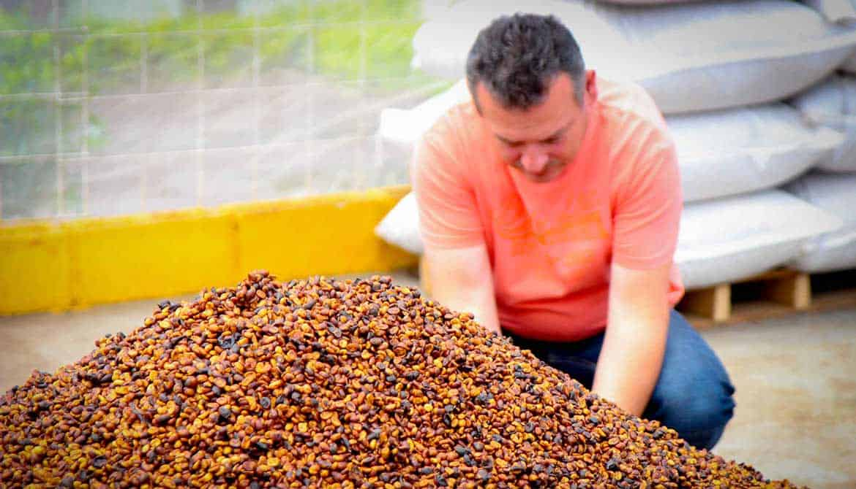 Photo of Driftaway Coffee farmer and coffee beans